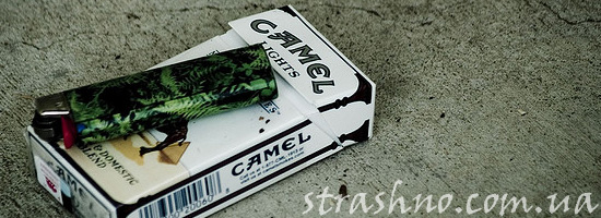 Страшная история о сигаретах