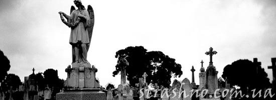 Вид из окна на кладбище