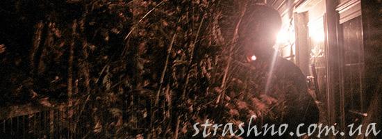 Страшное дерево на кладбище ночью