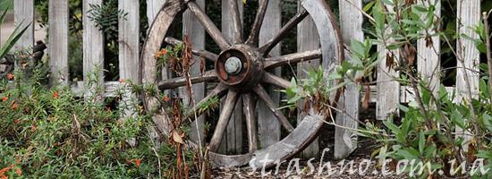 История про ведьмино колесо