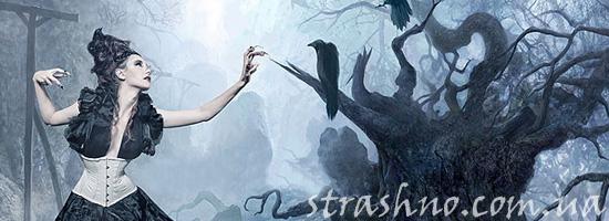 История о засаде на ведьму