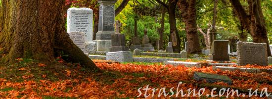 Страшная история о бабушке на кладбище