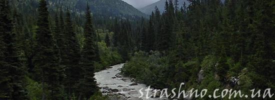 Поучительная история о духах леса