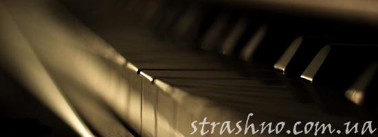 Невидимый ночной музыкант