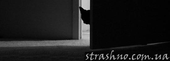 История о пугающих шагах