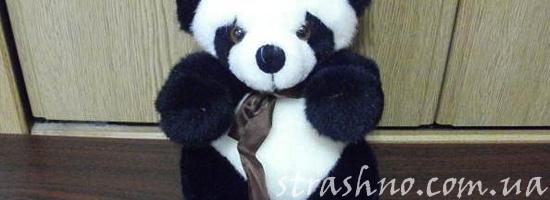 Игрушка панды с могилы