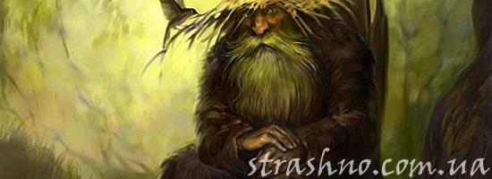 Мистический рассказ про лешего в лесу