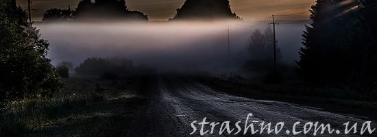 Жуткий лесной туман