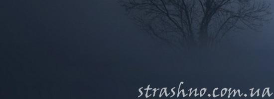 Мистический туман