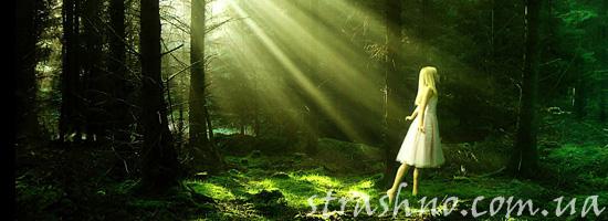 Девочка на опушке леса