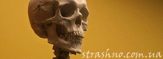Перезахоронение странного скелета