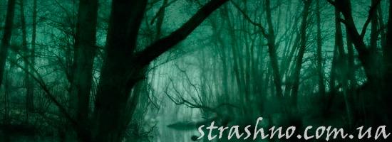 История про лешего и чертей в страшном лесу