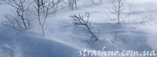 Духи в зимней метели