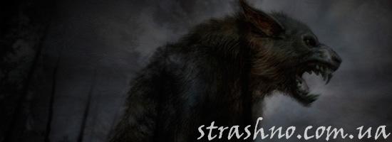 Жуткий волк-оборотень