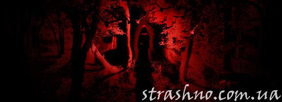 Страшилка про вампиршу из леса