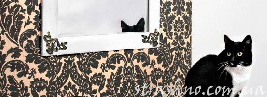 Кошка на трюмо с зеркалом