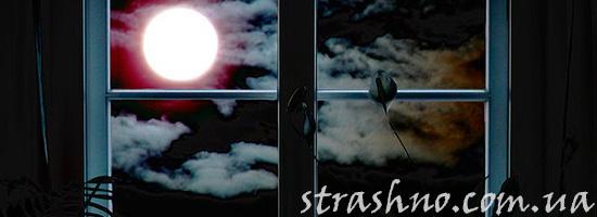Луна светит в окно