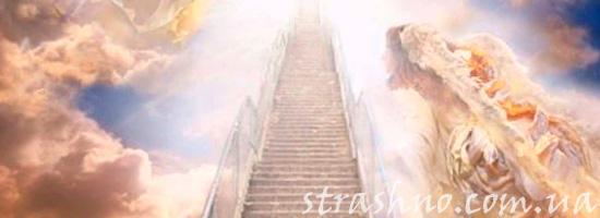 Рай из воспоминаний потерявшей сознание девочки