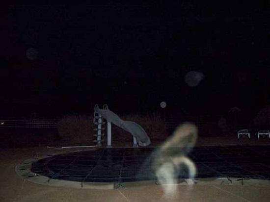 мистика бассейн