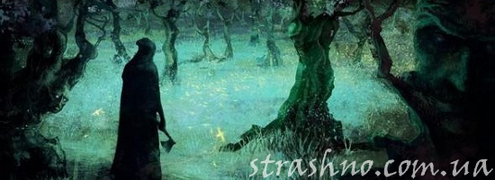 колдун в лесу