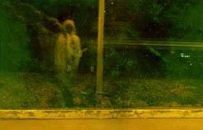 призрак у дороги