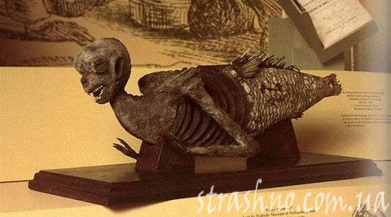 мумия русалки из Японии