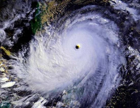 Тайфун Норуда  Taifuu no Noruda 1 из 1  База 1 по
