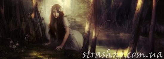 мистика фея в заповедном лесу