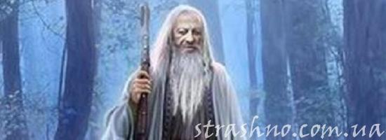 мистика старик в лесу