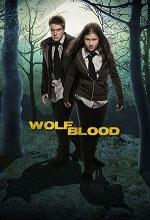 плакат к фильму Волчья кровь