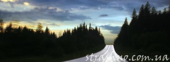 мистика лесная дорога ночью