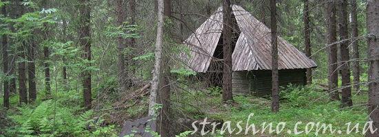 сарай в лесу
