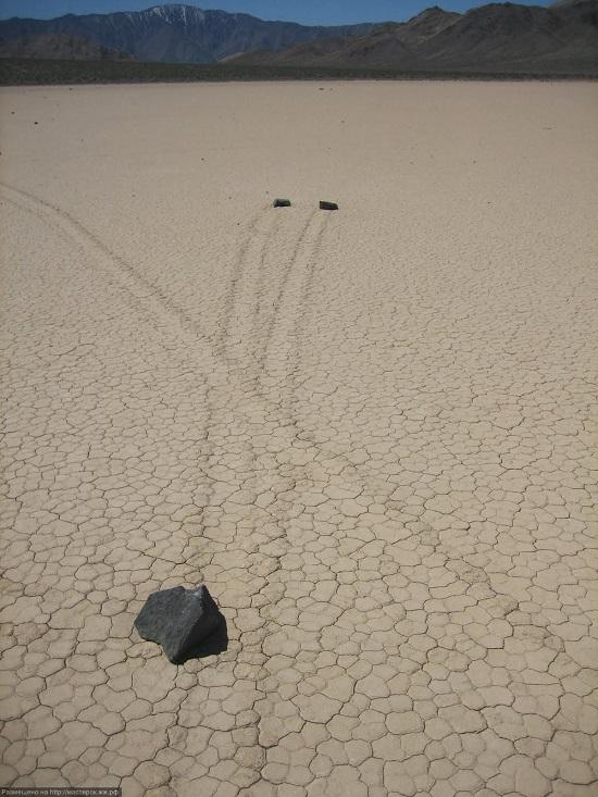 след живых камней