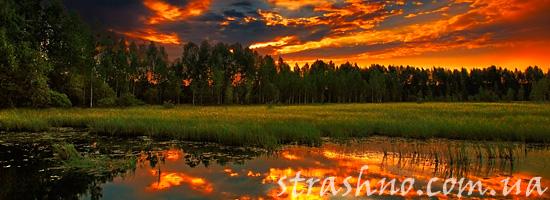 Мистика на болоте