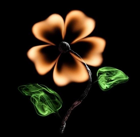 горящий цветок из спичек