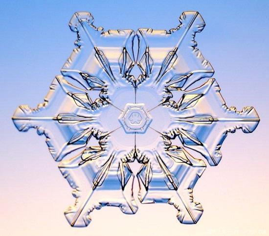 ледяная снежинка