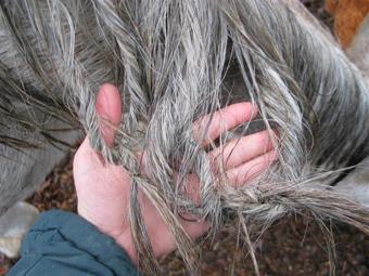 Как плетут косу покойникам 186