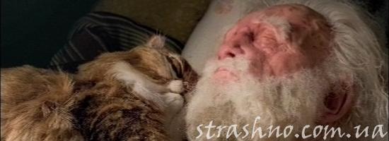 старый дед с котом