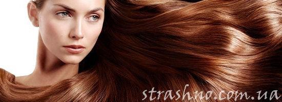 роскошные каштановые волосы