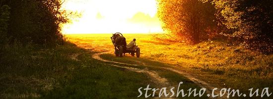 телега на дороге