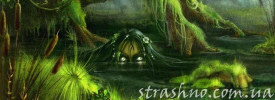 кикиморы болотной фото