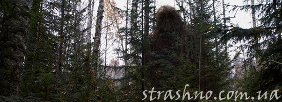 лесовик