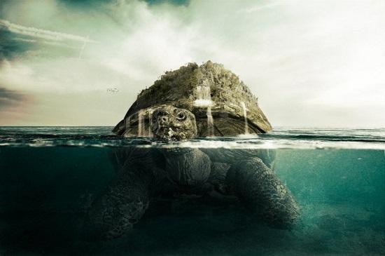 черепаха ао