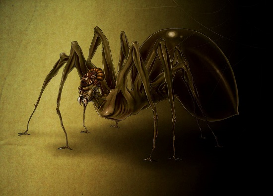 паук ананси