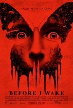 постер фильма Сомния