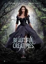 плакат фильма Прекрасные создания