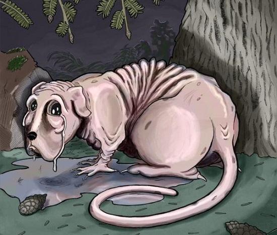 Североамериканские мифические существа