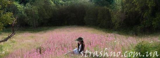 болотная поляна