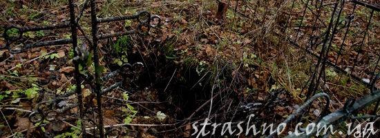 разрытая могила