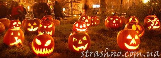 тыквы в ночь на хэллоуин
